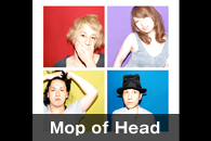 Mop of Head