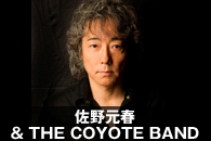 ���쌳�t & THE COYOTE BAND