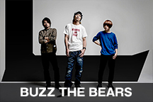 BUZZ THE BEARS