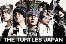 THE TURTLES JAPAN